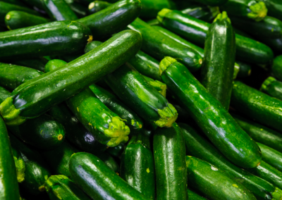 courgettes_Primar_France